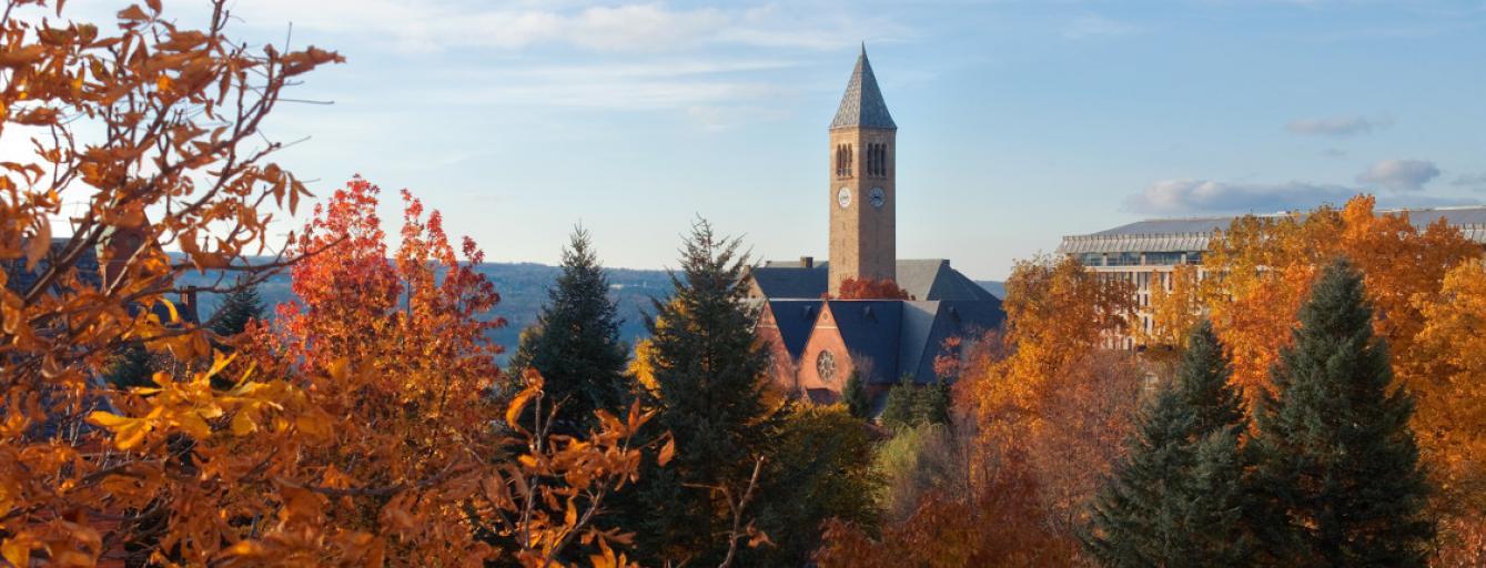 cornell-autumn